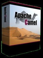 camel-box-small